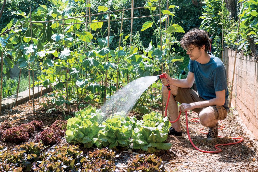 Come distribuire l'acqua nell'orto?