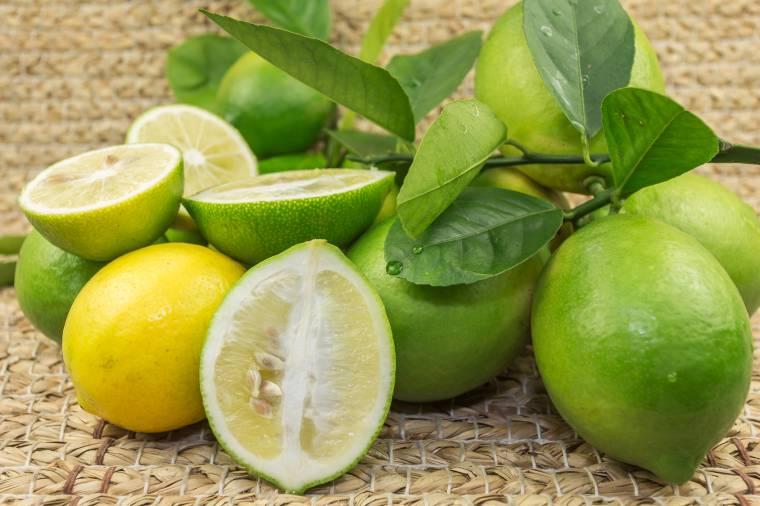 Varietà di limoni: limone verdello